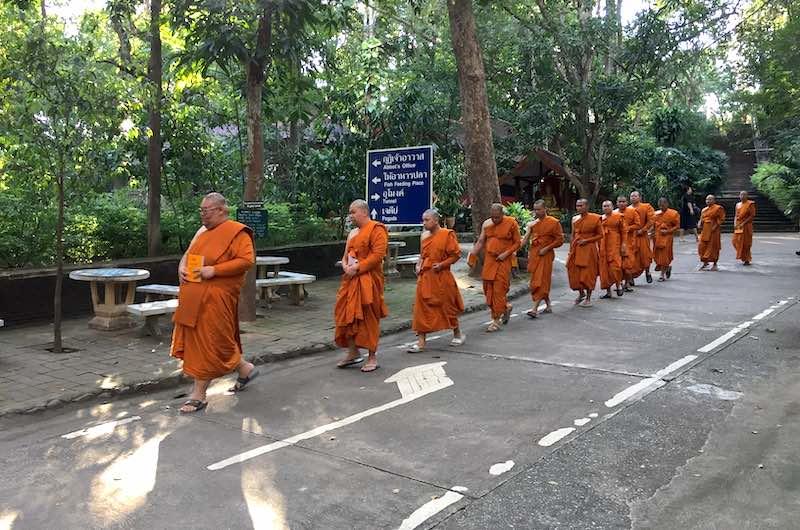 El budismo en Tailandia monjes