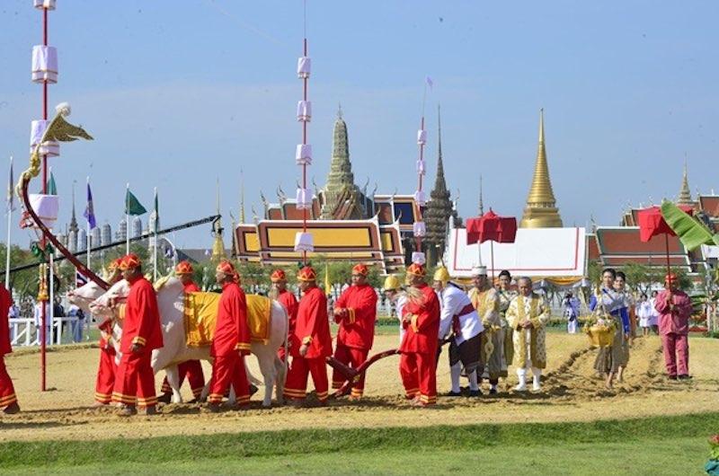 Rituales en Tailandia entorno al arroz