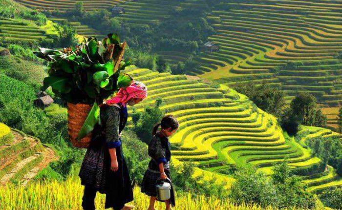 Vietnam del Norte Sapa