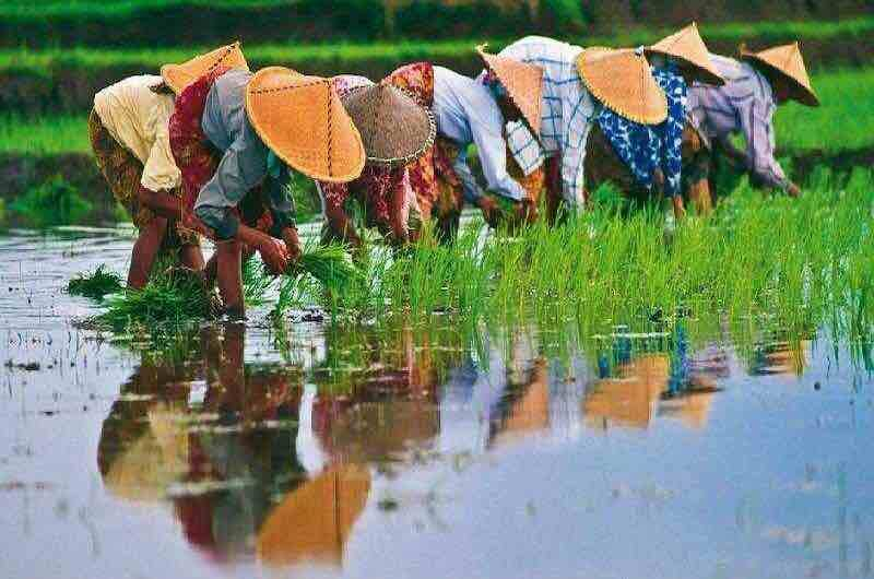 Ruta por Vietnam al completo