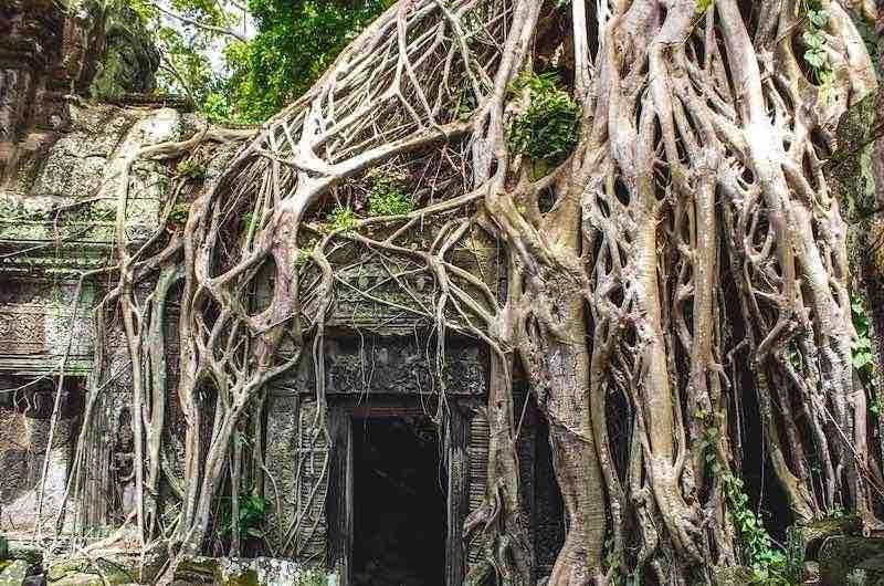 Ruta Vietnam y Camboya semiprivado