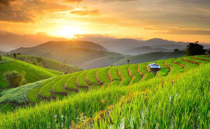 Viajar a Tailandia en Noviembre