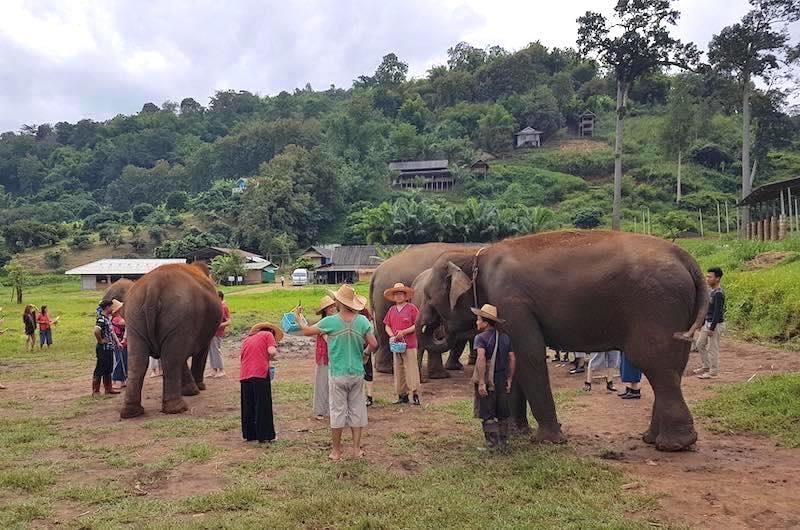 El Santuario de Elefantes Ran Tong